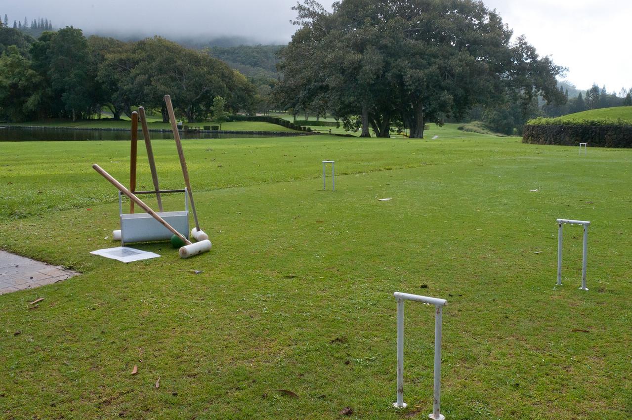 Open field in Lanai, Hawaii