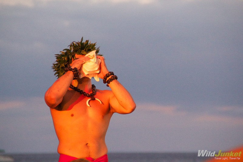 A native Hawaiian blowing on the conch shell