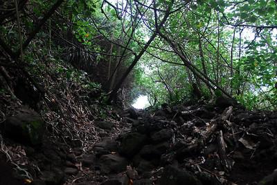 Hiking trail in Pololu Valley, Hawaii