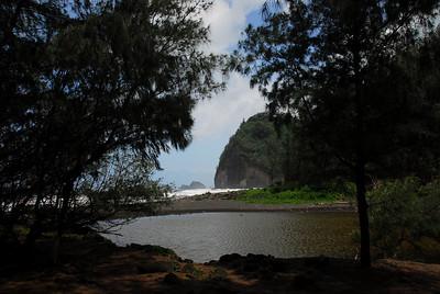 Stream near Pololu Valley, Hawaii