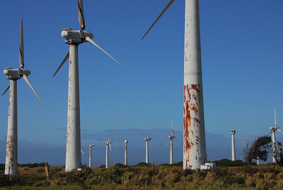Windmills in South Point, Hawaii