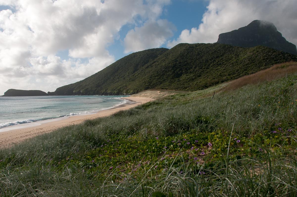 Blinky Beach, Lord Howe Island
