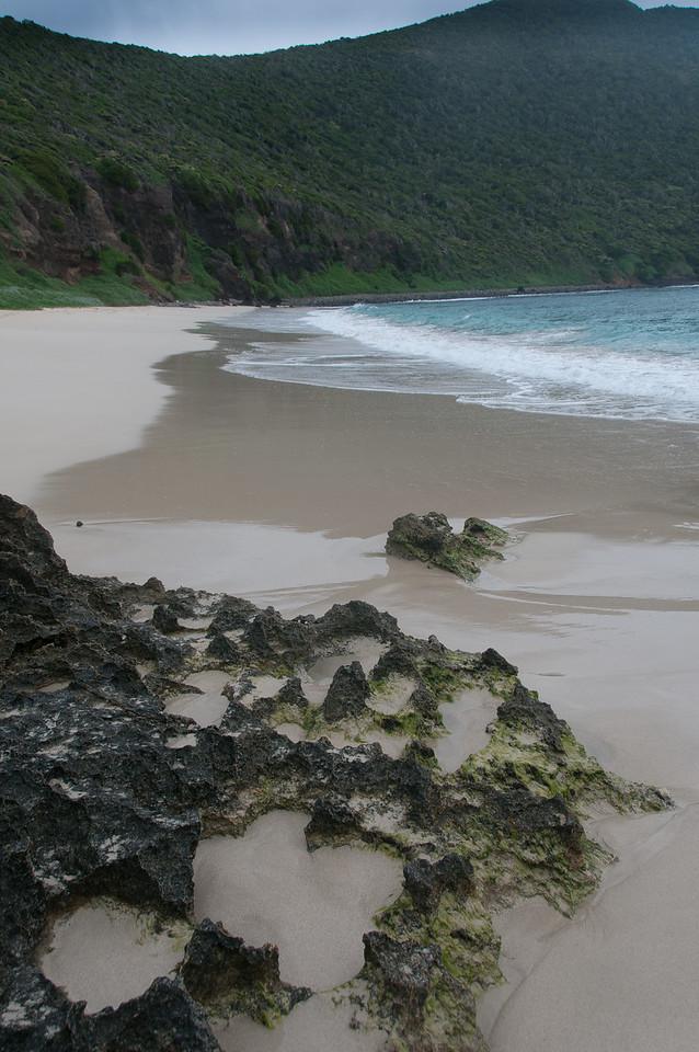Beach in Lord Howe Island