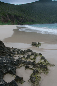 Beach in Lord Howe Island
