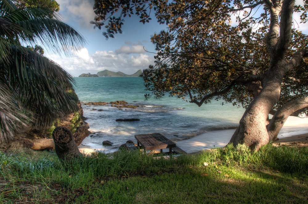 Secluded Picnic Spot on Lord Howe Island, Australia