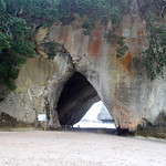 This Way to Narnia – Coromandel Peninsula, New Zealand – Daily Photo