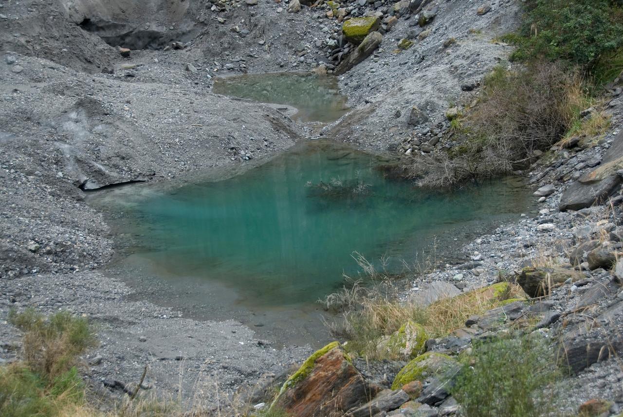 Pool at Fox Glacier