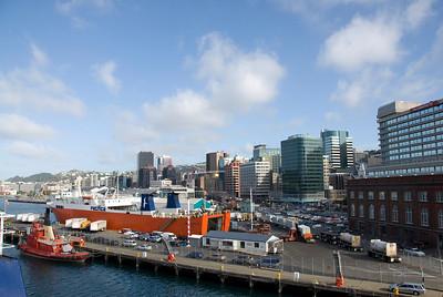 Wellington From Harbor