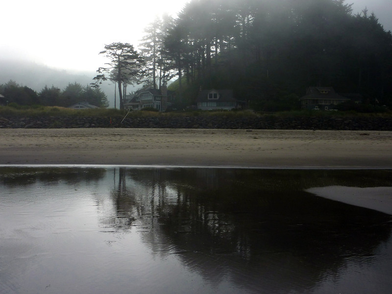 Fog-Bound Shore