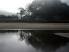 Fog-Bound Shore