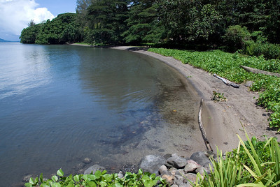 Shore at Kimbe Bay - West New Britain, Papua New Guinea
