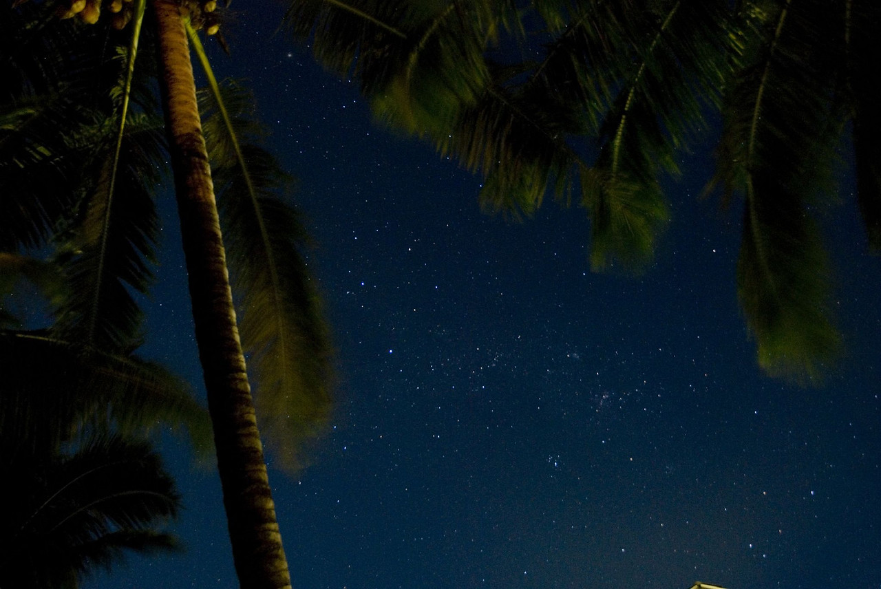 Southern Cross and Plam Tree, Savai'i, Samoa