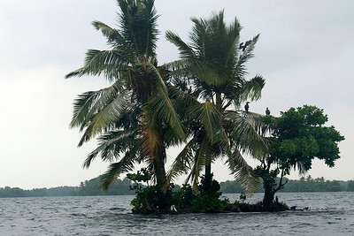 Small Island, Te Nggano Lagoon, Rennell Island - Solomon Islands