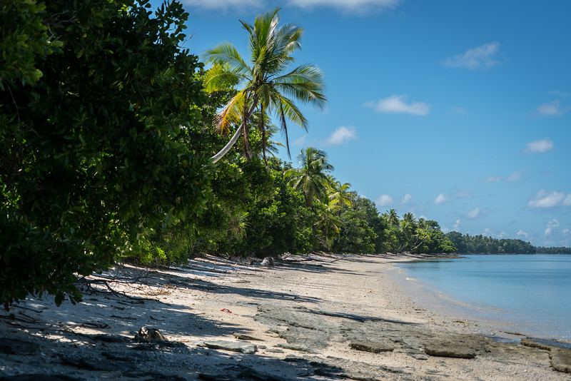 Shore of Funafuti