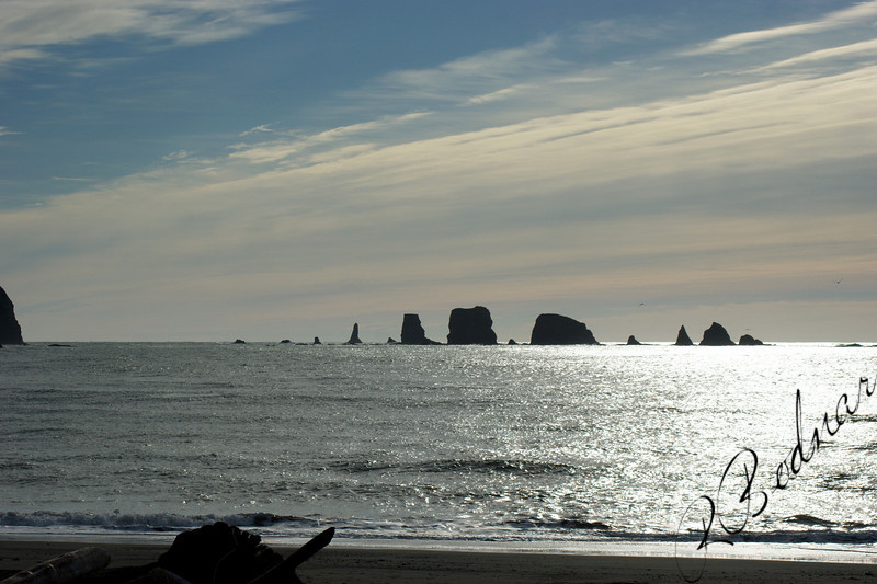 Photo By Bob Bodnar..........................La Push WA. On Pacific Coast
