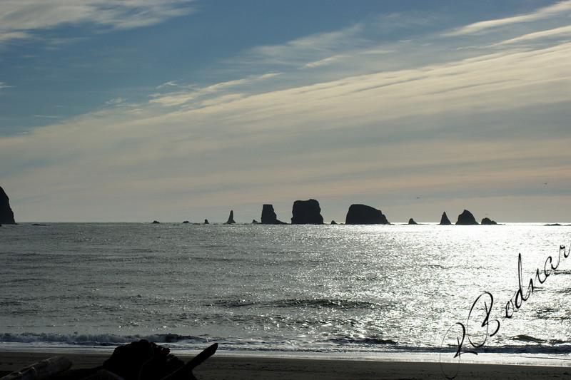 Photo By Bob Bodnar..........................La Push WA. On Pacific Coast