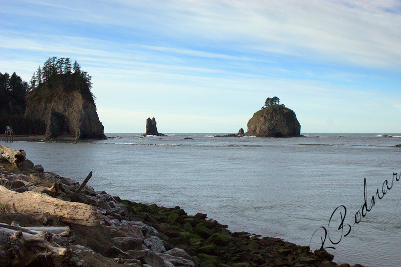 Photo By Bob Bodnar...................La Push WA. On Pacific Coast