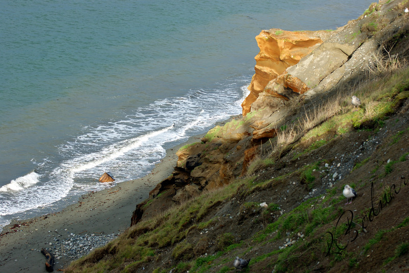 Photo By Bob Bodnar.................Looking over the Cliff at Dungeness National Wildlife Refuge