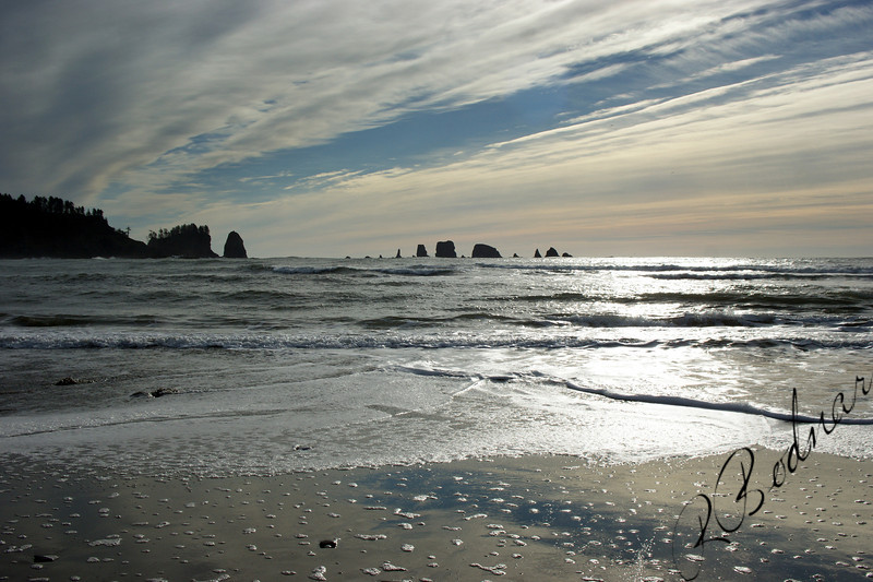 Photo By Bob Bodnar....................La Push WA.
