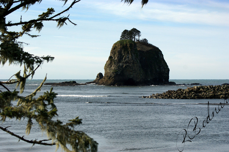 Photo By Bob Bodnar....................Looking out into the Pacific Ocean at La Push WA.