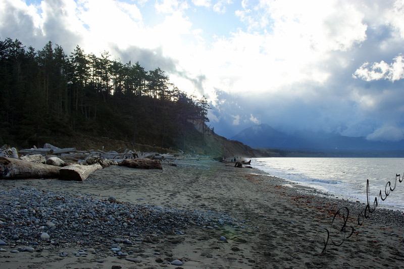 Photo By Bob Bodnar.......................The Beach at Dungeness Spit