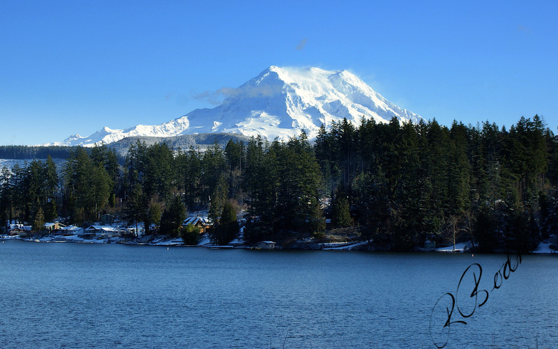 Photo By Bob Bodnar........................Mt.  Rainier National Park, Taken from Rt. 7 (Mountain Hwy)