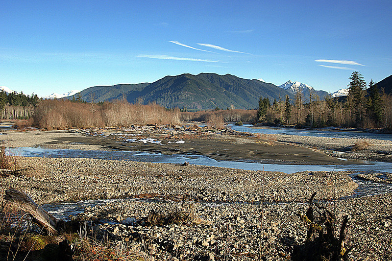 Photo By Bob Bodnar...........Hoh River Valley,  Just South of Forks WA.,  By Hoh Rain Forest, Olympic National Park