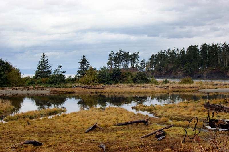 Photo By Bob Bodnar..............Crescent Bay By Tongue Point Wa. & Salt Creek County Park
