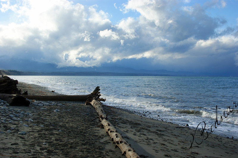Photo By Bob Bodnar.....................Dungeness Spit
