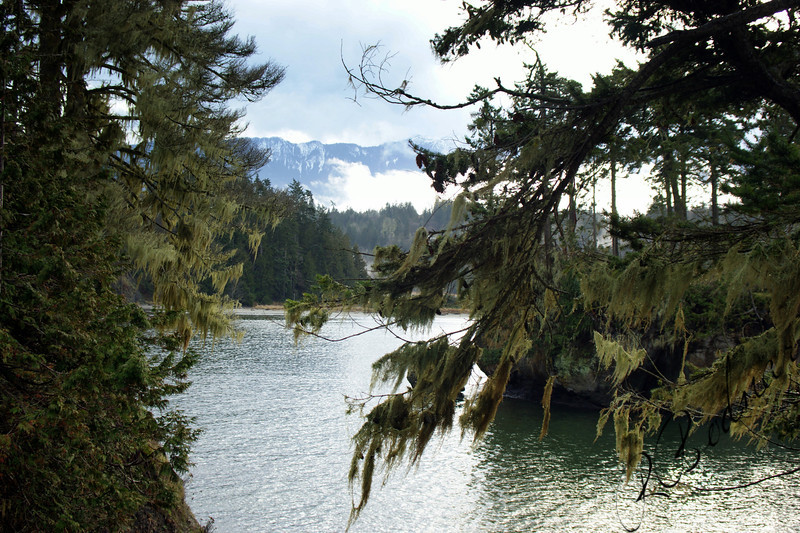 Photo By Bob Bodnar...............Crescent Bay By Tongue Point WA. & Salt Creek County Park