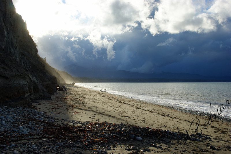 Photo By Bob Bodnar.................................Dungeness Spit