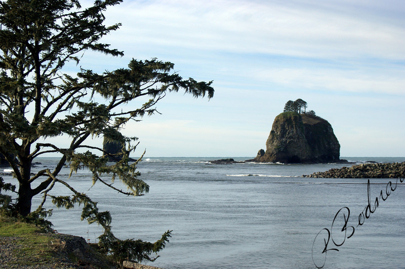 Photo By Bob Bodnar................................La Push WA.