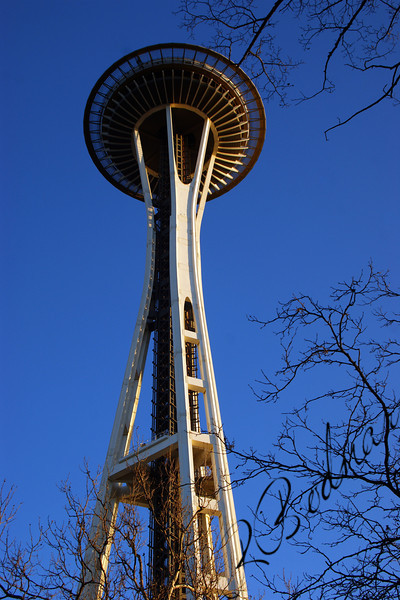 Photo By Bob Bodnar............................Seattle's Space Needle