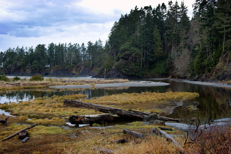 Photo By Bob Bodnar............Crescent Bay By Tongue Point WA. & Salt Creek County Park