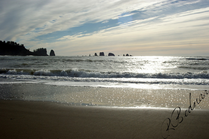 Photo By Bob Bodnar..........................La Push WA.