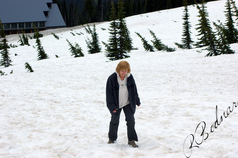 Photo By Bob Bodnar............Sandy on her way up the Mountain at Mt Rainier