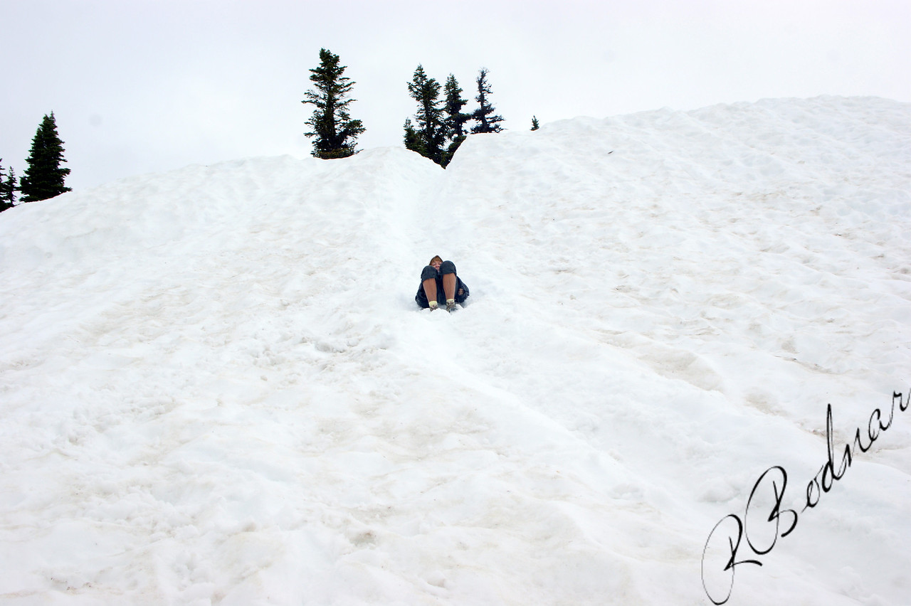 Photo By Bob Bodnar............Sandy on her way down the Mountain, The easy way