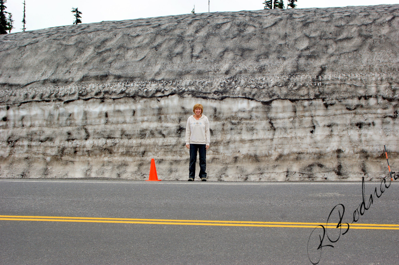 """Photo By Bob Bodnar...........Sandy showing the height of the Snow at Mt. Rainiers, Paradise Visitors Center.  She's 5'2""""<br /> Mount Rainier is a massive stratovolcano located 54 miles  southeast of Seattle in the state of Washington, United States. It is the most topographically prominent mountain in the contiguous United States and the Cascade Volcanic Arc, with a summit elevation of 14,411 feet.  Mt. Rainier is considered one of the most dangerous volcanoes in the world, and it is on the Decade Volcano list. Because of its large amount of glacial ice, Mt. Rainier could potentially produce massive lahars that would threaten the whole Puyallup River valley."""