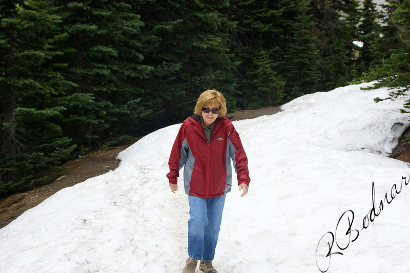 Photo By Bob Bodnar.....................................Sandy On the Trail at Hurricane Ridge