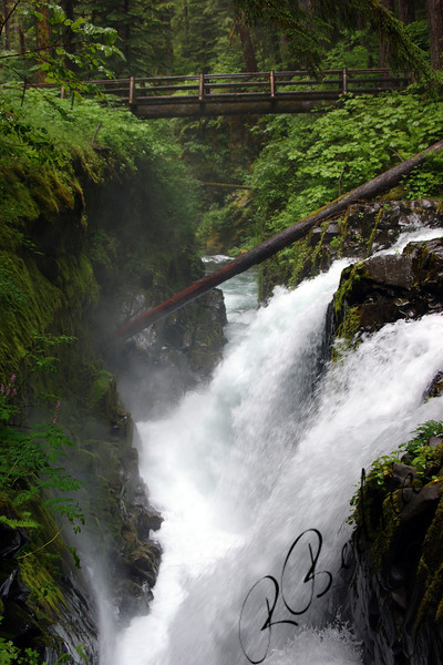 Photo By Bob Bodnar.....Sol Duc Falls,  Olympic National Park