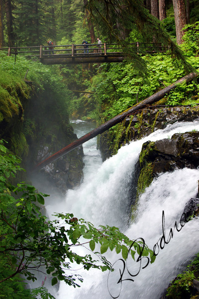 Photo By Bob Bodnar........Sol Duc Falls, Olympic National Park