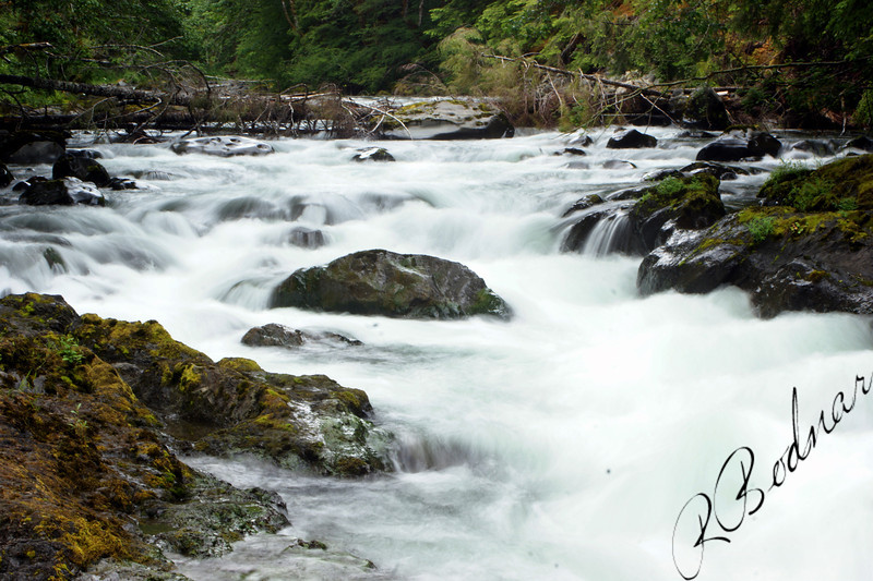 Photo By Bob Bodnar......Water leading to Sol Duc Falls, Olympic National Park