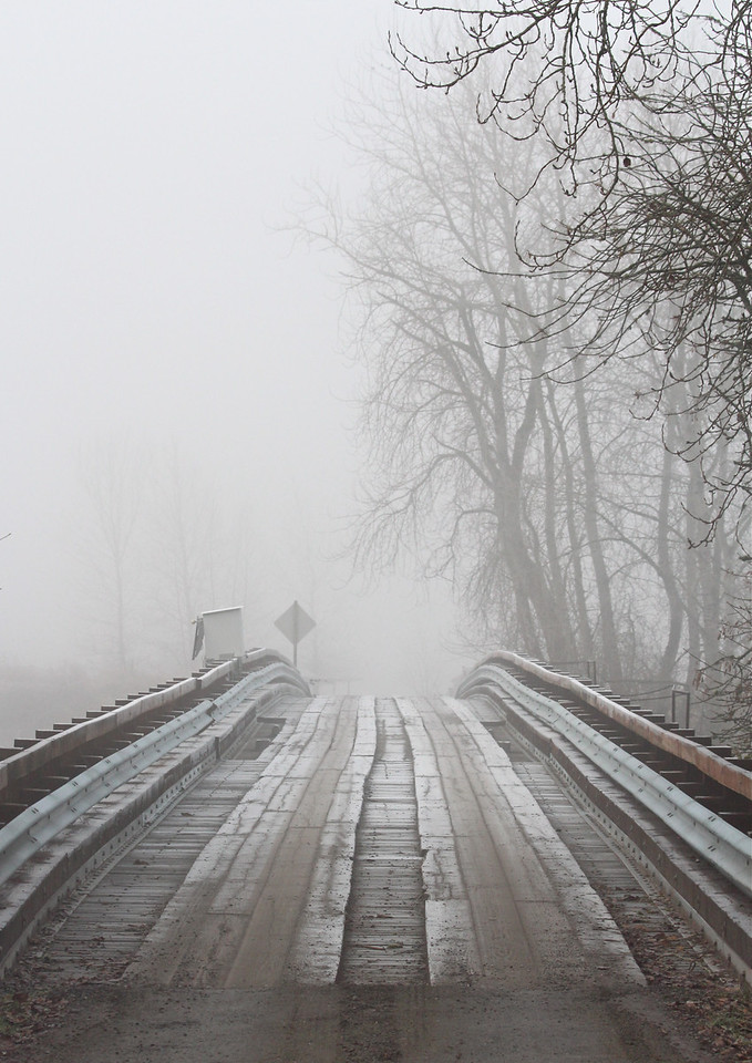 foggy Bridge Refuge