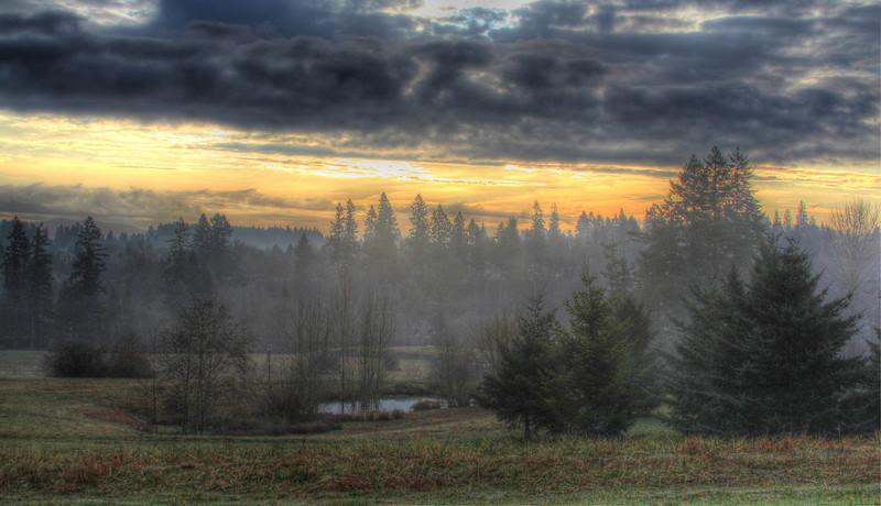 View Feb11 wsuv