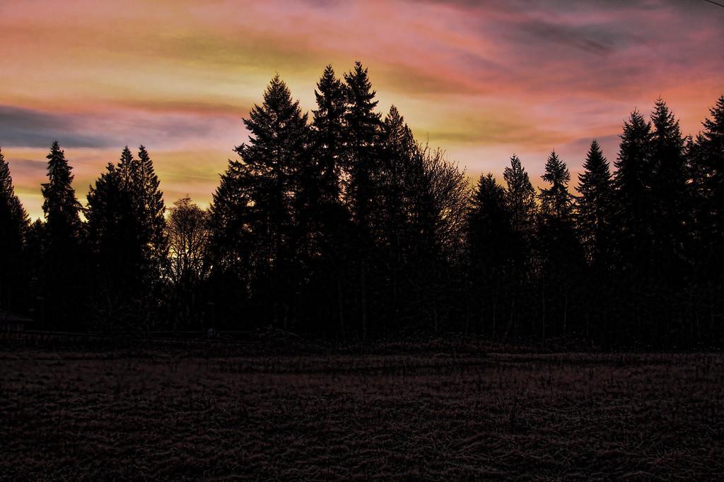 Jan 12 sunrise