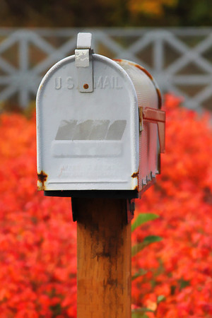 FallMailbox