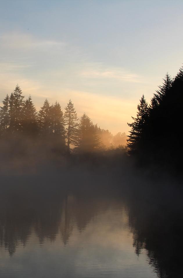 Sun breaking thru Fargher Lake