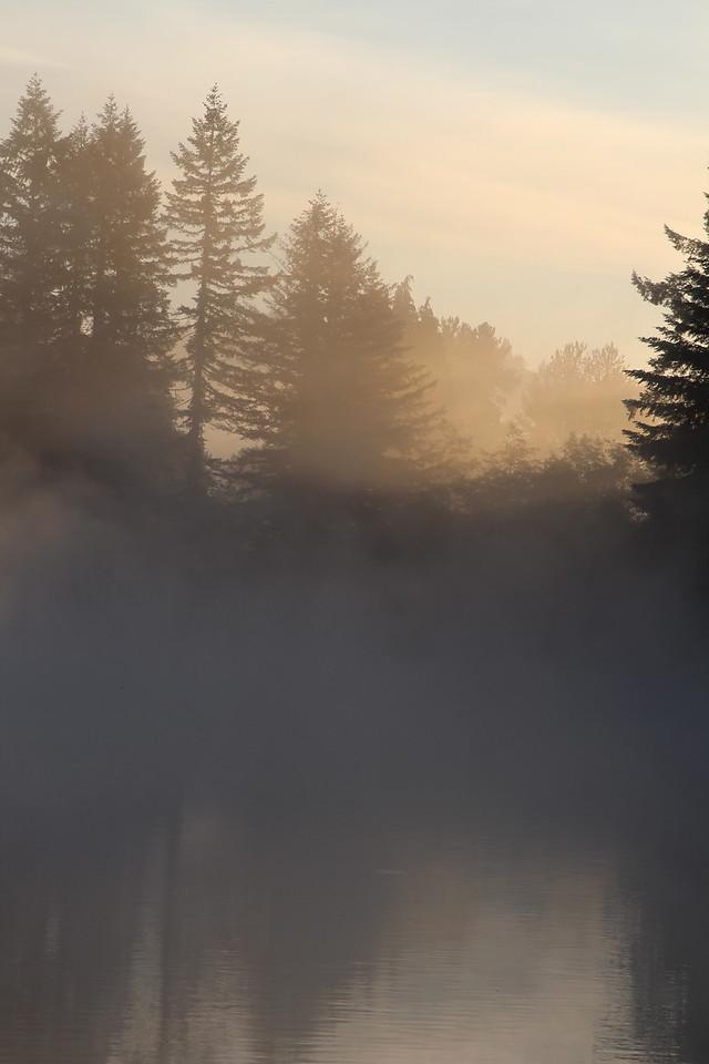 Foggy Sunrise Fargher Lake