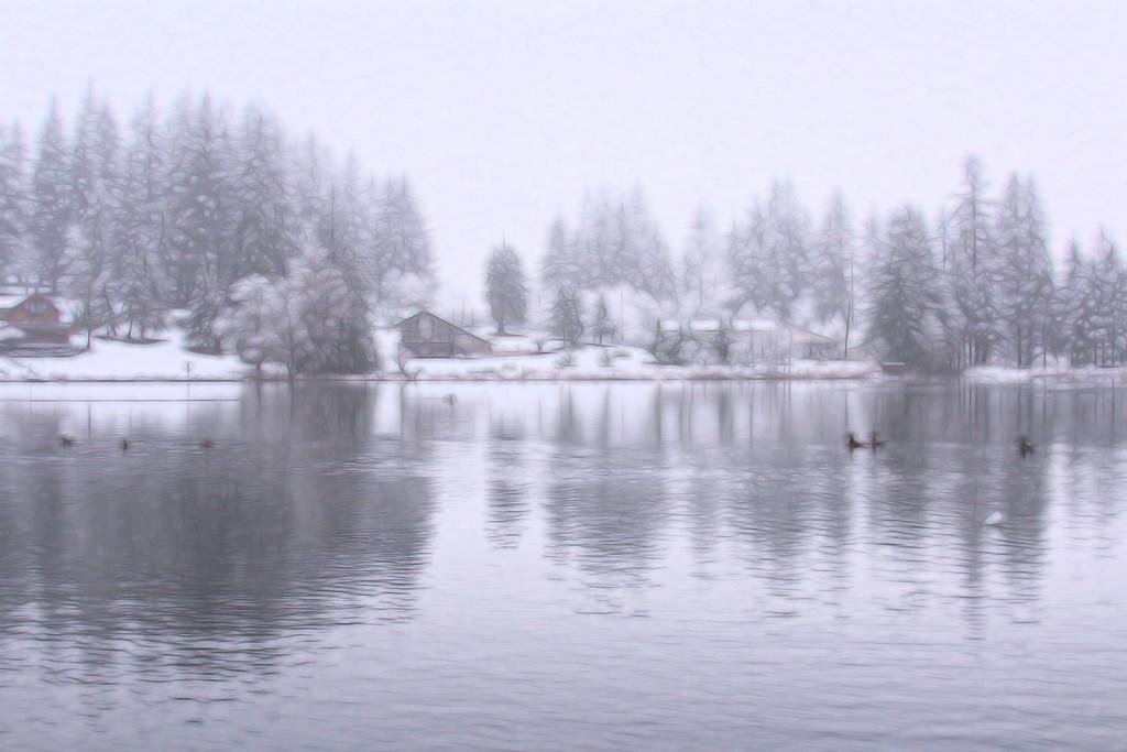 SnowyDream