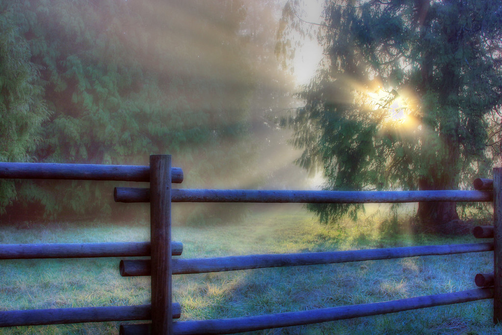 misty morning sunrise fence